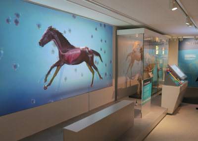 National Horse Racing Museum: Racing machine